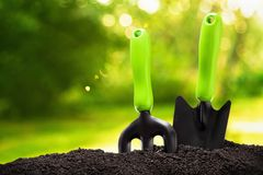 ogrodnictwo ogrodnicze narzędzia wiosny Zdjęcie Stock