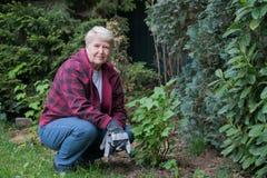 ogrodnictwo seniora kobieta Obrazy Royalty Free