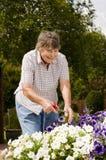 ogrodnictwo stare kobiety Fotografia Royalty Free