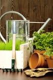 ogrodnictwo wiosna Zdjęcie Stock