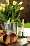 ogrodnictwo wiosna Fotografia Stock