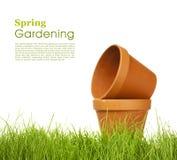 ogrodnictwo wiosna Zdjęcie Royalty Free