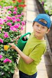 ogrodniczka obrazy royalty free
