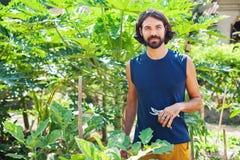 Ogrodniczka arymażu rośliny obrazy stock