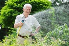 Ogrodniczka nawadnia rośliny Obrazy Royalty Free