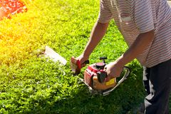 Ogrodniczka przycina w parku Zdjęcia Royalty Free