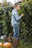 ogrodniczka trochę Zdjęcia Royalty Free