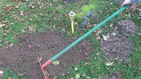 Ogrodniczka usuwa z świntuchów kretowiskami na gazonie z jesień liśćmi zdjęcie wideo