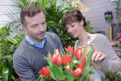 Ogrodniczka w pepiniery sklepowej daje rada męski klient Obraz Royalty Free