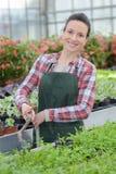 Ogrodniczka z roślinami w domu obraz stock