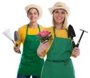 Ogrodniczki gardner drużyny kwiatu ogrodnictwa ogrodowych narzędzi zajęcie j Obraz Stock