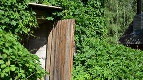 Ogrodniczki piwnicy jedzenie zbiory