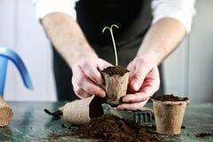Ogrodniczki ręki flancy stół Zdjęcia Royalty Free