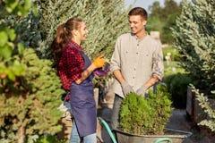 Ogrodniczki w ogródzie na ciepłym słonecznym dniu Dziewczyny ogrodniczka pokazuje mię facet rośliny w garnek pozycji na obrazy royalty free