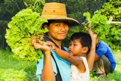 Ogrodniczki życie Zdjęcie Stock