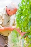 Ogrodniczy egzamin obraz stock