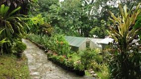 Ogrodniczy ogrodowi Sikkim ind zdjęcie royalty free