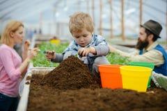ogrodnik trochę mała ogrodniczki praca z ziemią mała ogrodniczka w szklarni mali ogrodniczki dziecka flancowania kwiaty obrazy stock