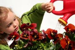 ogrodnik trochę Fotografia Royalty Free