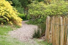 Ogrodowa ścieżka prowadzi przez zieleni i żółtych liściastych drzew obrazy royalty free