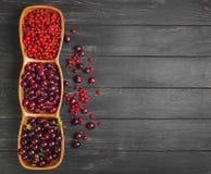 Ogrodowa świeża czerwona jagoda Obrazy Stock