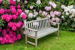 Ogrodowa ławka Fotografia Royalty Free