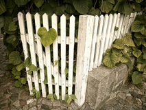 Ogrodowa brama retro Zdjęcia Royalty Free