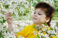 ogrodowa chłopiec wiosna Obraz Royalty Free