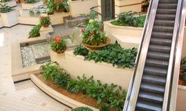 ogrodowa eskalator siklawa Zdjęcia Stock