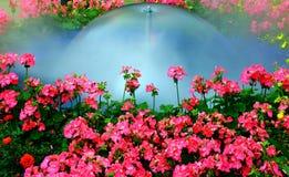 Ogrodowa fontanna Obrazy Royalty Free