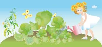 ogrodowa kapusty dziewczyna nalewa warzywa Zdjęcie Stock