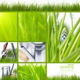 ogrodowa kolaż wiosna Zdjęcie Stock