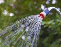 Ogrodowa prysznic Fotografia Stock