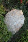 Ogrodowa skała Obrazy Royalty Free