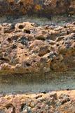 Ogrodowa skała Fotografia Royalty Free