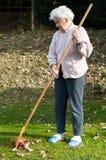 ogrodowa starsza kobieta zdjęcia stock