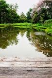 Ogrodowa studnia mostów drzew łąk powietrza dobrej pogody ziemi głąbika natura Obrazy Royalty Free