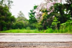 Ogrodowa studnia mostów drzew łąk powietrza dobrej pogody ziemi głąbika natura Zdjęcie Royalty Free