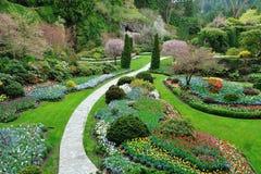 ogrodowa wiosna fotografia royalty free