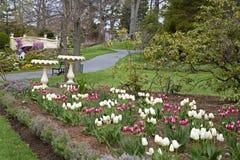 ogrodowa wiosna Zdjęcia Stock