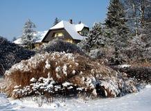 ogrodowa zima Obraz Royalty Free