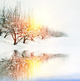 ogrodowa zima Zdjęcia Stock