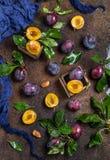 Ogrodowe śliwki na stole Zamyka up świeże śliwki z liśćmi Jesieni żniwo śliwki fotografia royalty free