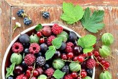 Ogrodowe jagody w pucharze na drewnianym tle Fotografia Stock