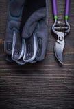 Ogrodowe pruner ogrodnictwa rękawiczki na rocznika drewnie wsiadają rolnictwo Obrazy Royalty Free