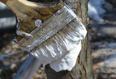 Ogrodowe rękawiczki, narzędzia, ogród, młot, gwóźdź, drewno, materiały, pracujący zawody, praca, młotkuje gwoździe, ogród praca,  Fotografia Royalty Free