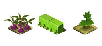 Ogrodowe rośliny i zieleń one fechtują się, gemowi interfejs użytkownika natury elementy dla wideo gra komputerowa wektoru ilustr royalty ilustracja