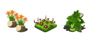 Ogrodowe rośliny, kwiaty i warzywa, gemowi interfejs użytkownika natury elementy dla wideo gra komputerowa wektoru ilustraci ilustracji