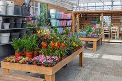 Ogrodowe sklepowe sprzedawanie rośliny, akcesoria i lubią kwiatów garnki Obrazy Royalty Free