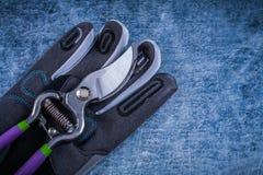 Ogrodowego pruner personelu ochronne rękawiczki na kruszcowym tle agr Fotografia Stock